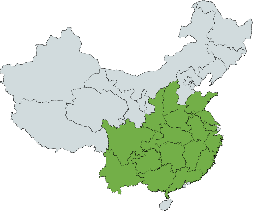 Plantacje herbaty w Chinach