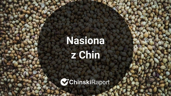 Nasiona z Chin
